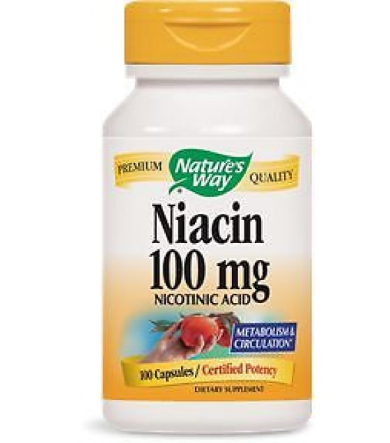 [Nature`S Way] Vitamin B Niacin 100 mg