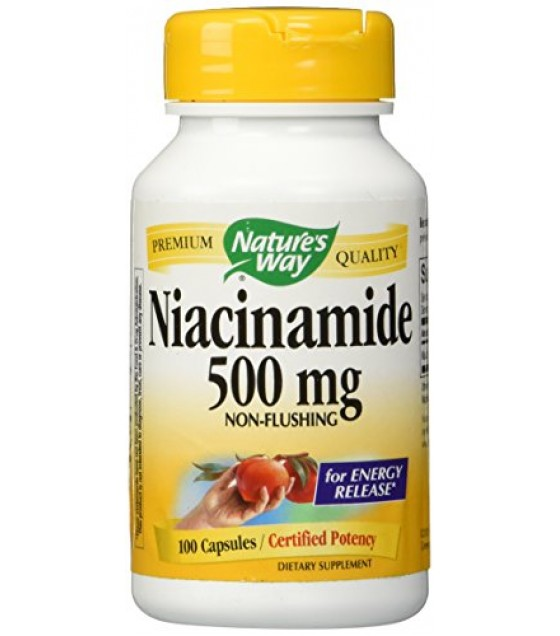 [Nature`S Way] Vitamin B Niacinamide 500 mg