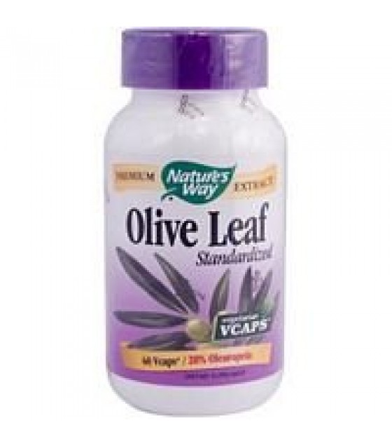 [Nature`S Way] Standardized Herbs Olive Leaf