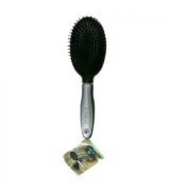 [Earth Therapeutics, Ltd.] Hair Brushes Regular