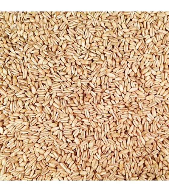 [Grains]  Oats, Whole, Hulled, Toasted  100% Organic